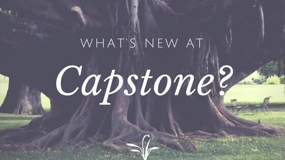 capstone new services
